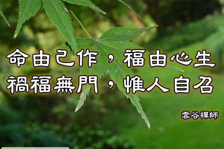 【灵魂揭密】生命、财富、福报之间的真相!